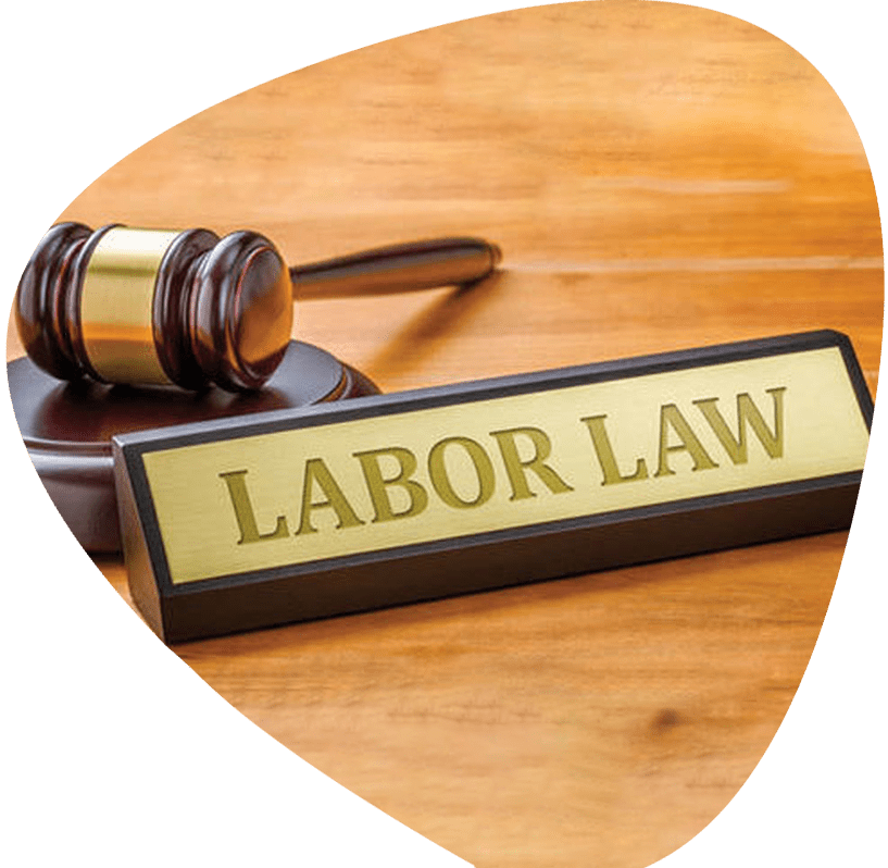 https://www.maheshwariandco.com/wp-content/uploads/2021/03/labour-law.png